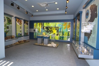 Natural History Museum of Alexandroupolis