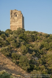 Tower of Apollonia