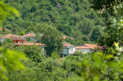 Селище Кариофитон