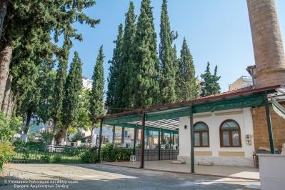 Чинар джамии