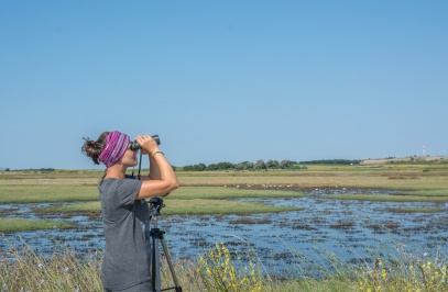 Birdwatching in the prefecture of Xanthi - Xanthi Region
